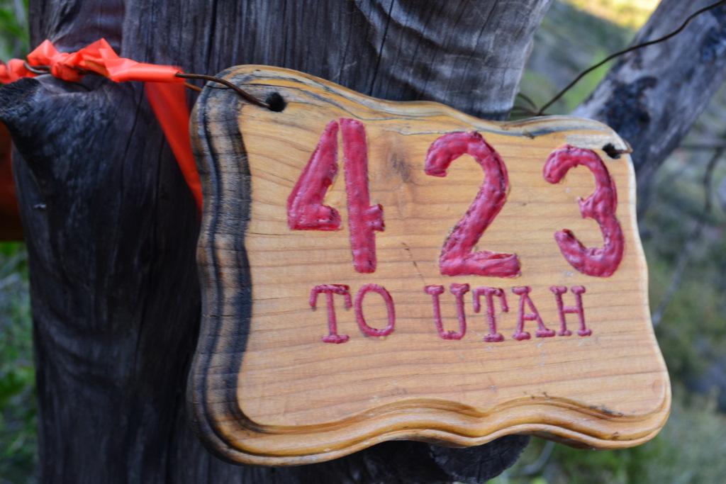 423 to Utah